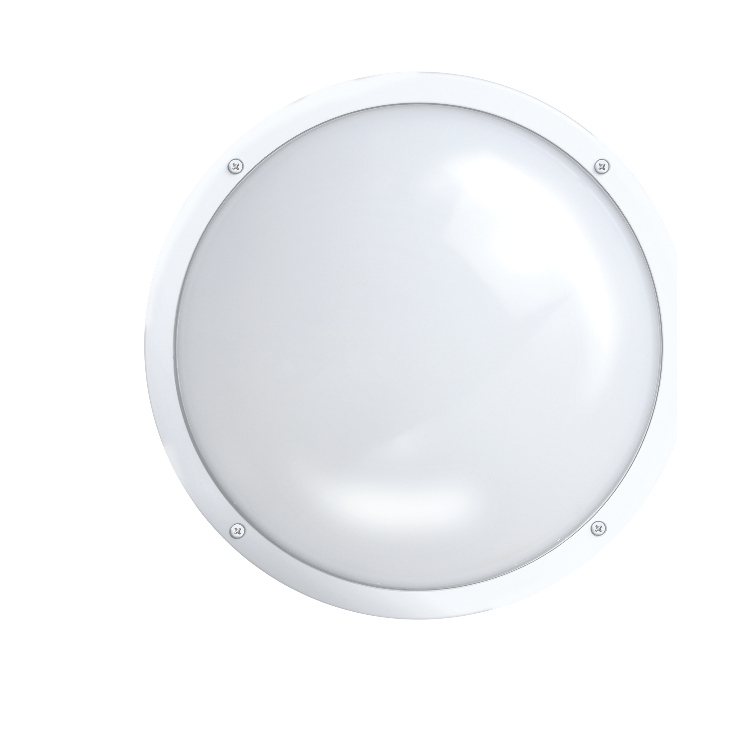"Shorebreaker® 10"" Outdoor Light - Round White"